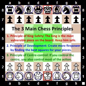 3 Main Chess Principles 300