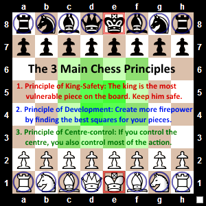 3 Main Chess Principles