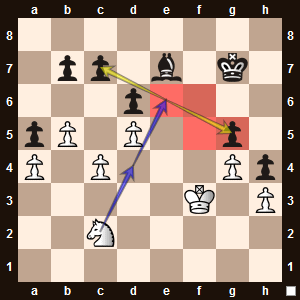 The highlighted squares are weak because the black pawns cannot protect them.