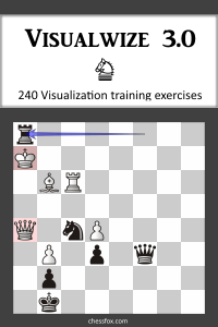 Visualwize 3.0 - Visualization training program